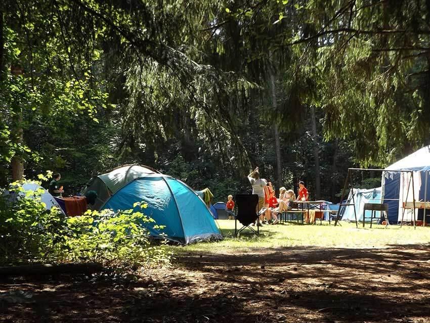 auf dem bild sieht man eine Gruppe beim Zelten auf einer Waldlichtung die bestimmt eine Transportbox für camping dabei haben